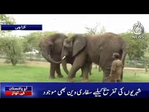 Safari Park Karachi..Tafreeh Ka Markaz Par Sahuliat?| Aaj Pakistan Ki Awaz | 28 Sep | Aaj News