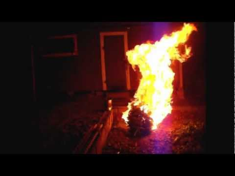 Just How Well Does A Christmas Tree Burn?