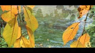 Autumn of Ninfa