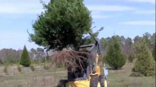 "Clearing fields at Hollow Creek Tree Farm with ""Tree Jaws"""