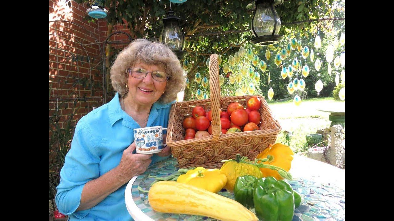 Harvesting  Tomatoes ,Squash, Bell Pepper,  String Beans In Ga.