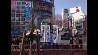 湯川れい子 細川佳代子 澤地久枝 2/1 渋谷ハチ公前 細川もりひろ応援演説.