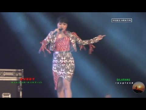Niken Aprilia - Konco Mesra - OM Monata LIVE Desa Cibiyuk Pemalang