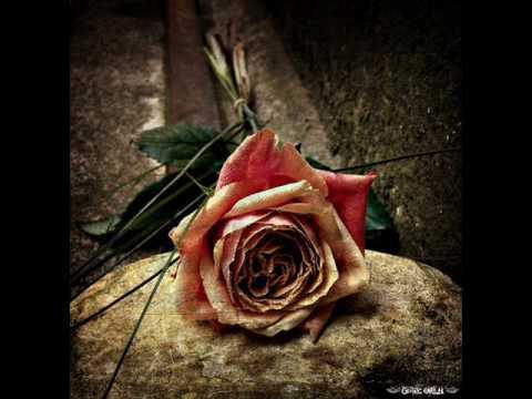 Within Temptation  The Truth Beneath The Rose lyrics