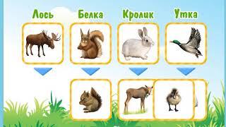 Развивающий мультик для ребенка  Изучаем животных  Найди родителей маленьких звирюшек