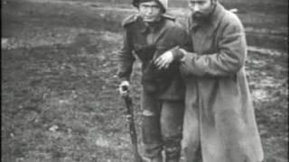 Жертвы войны. Мирное население в годы Великой Отечественной войны.
