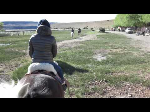 Patagonia Tour: Day 8 - Gaucho Estancia in the Argentinian Steppe, horse riding