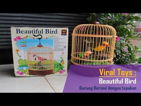 Popular kid toys : Bird toys (Beautiful bird)