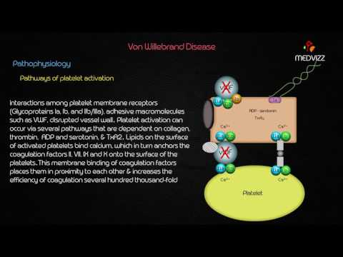 Von Willebrand Disease - Case based webinar discussion usmle step 1