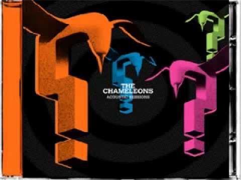 The Chameleons - Nathan's Phase  live Recording for Seattle Radio