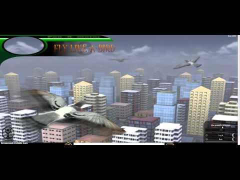 Обзор игры Летай как птица 3