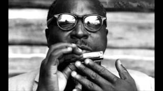Sonny Terry -The Red Cross Store