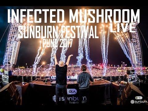 Infected Mushroom Live @ Sunburn Festival 2017 Pune
