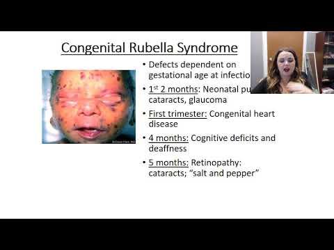 Rubella Video