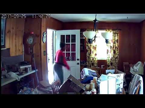 Surveillance video shows North Little Rock burglars