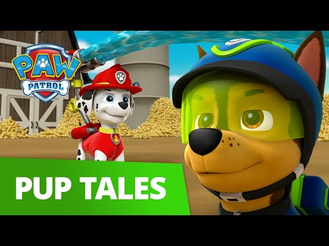 PAW Patrol - Pups and the Popcorn Predicament! 🍿 Rescue Episode - PAW Patrol Official & Friends!