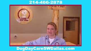 Dog Day Care Duncanville Tx Free Trial Day Call 214-466-2878