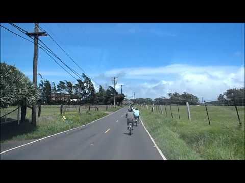 Maui Concierge Easy Riders