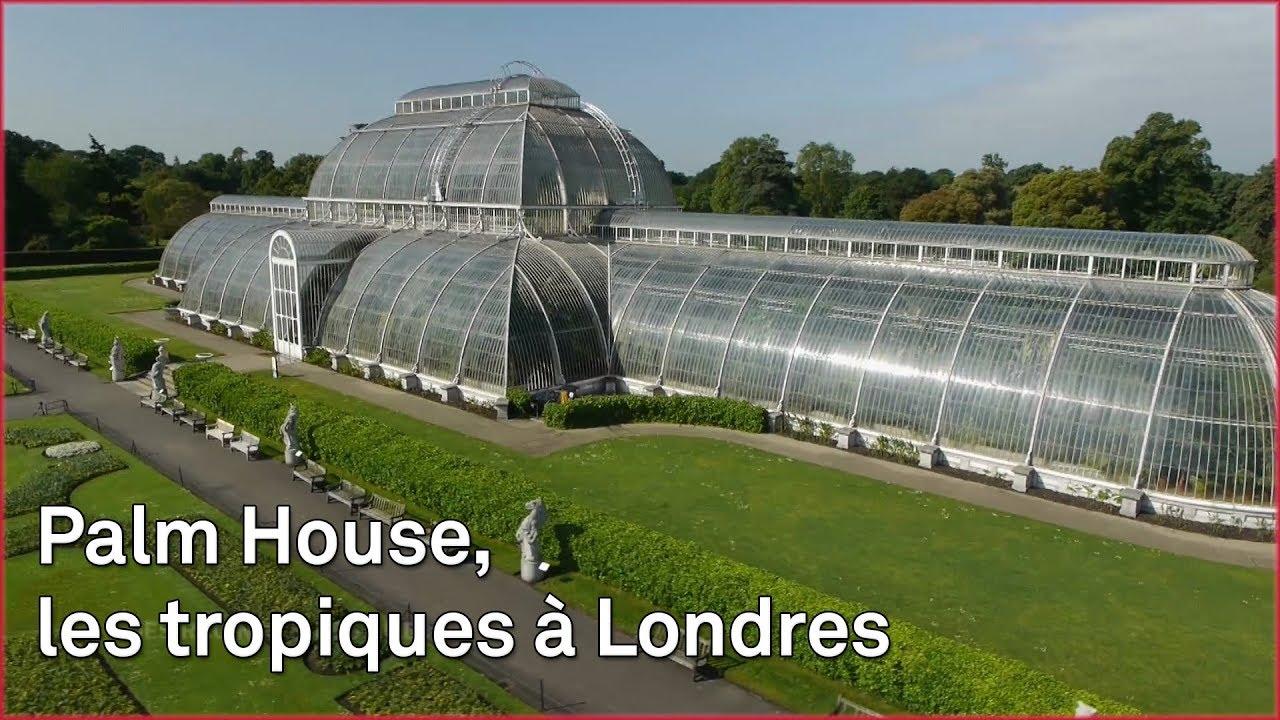 Download Les jardins de Kew abritent les plantes du monde entier
