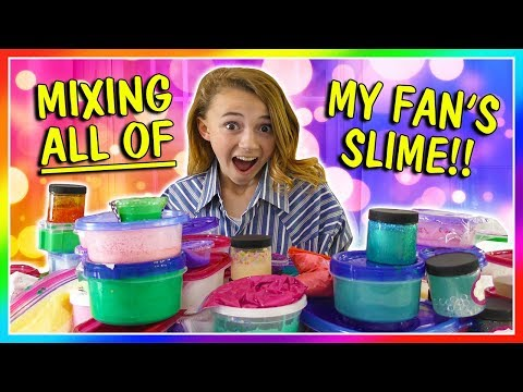 MIXING ALL OF MY FAN'S SLIME!😱| We Are The Davises