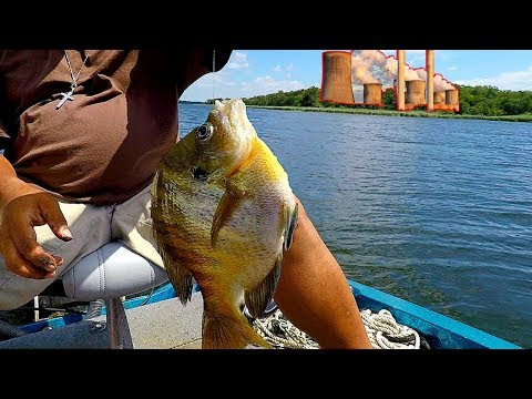 Fishing For MONSTER Bluegill On A Old Power Plant Lake