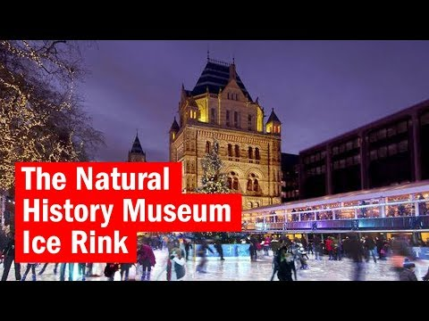 The Natural History Museum Ice Rink | First Look | Time Out London