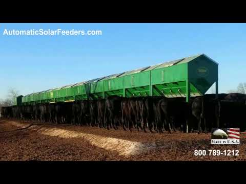 AutoMax Solar Cattle Feeders LESS LABOR more FREE TIME
