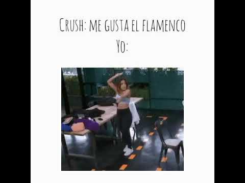 Memes | Julia Medina | OT2018