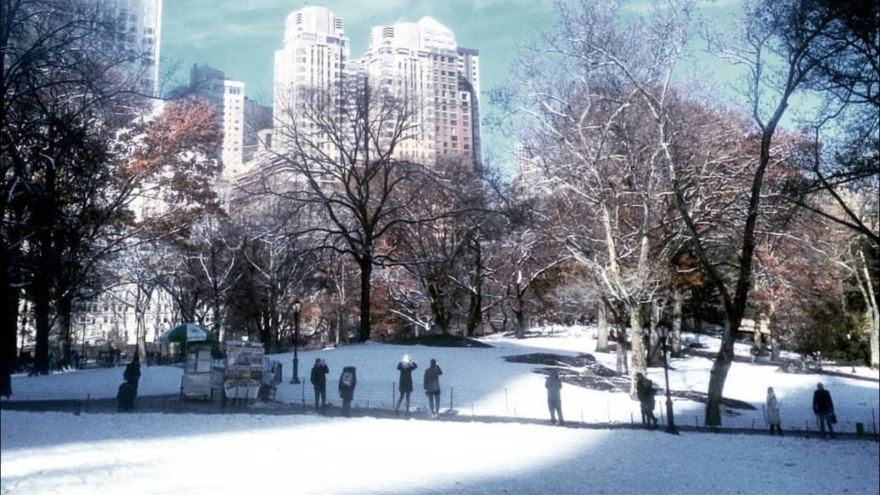 New York City 2019 Central Park Is Snow Covered 4k Youtube