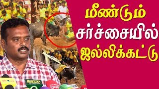 Jallikattu Protest At Marina Beach - Jallikattu Video
