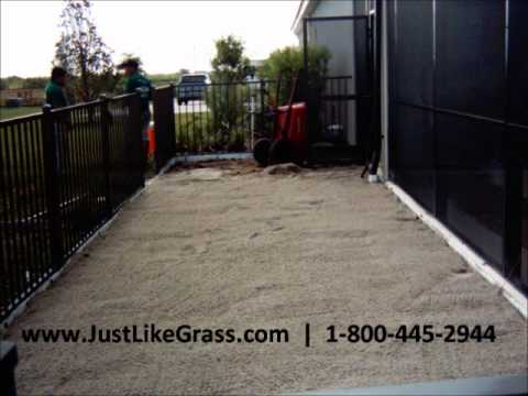 Artificial Grass Dog Run Install Florida Sept 2011 Wmv