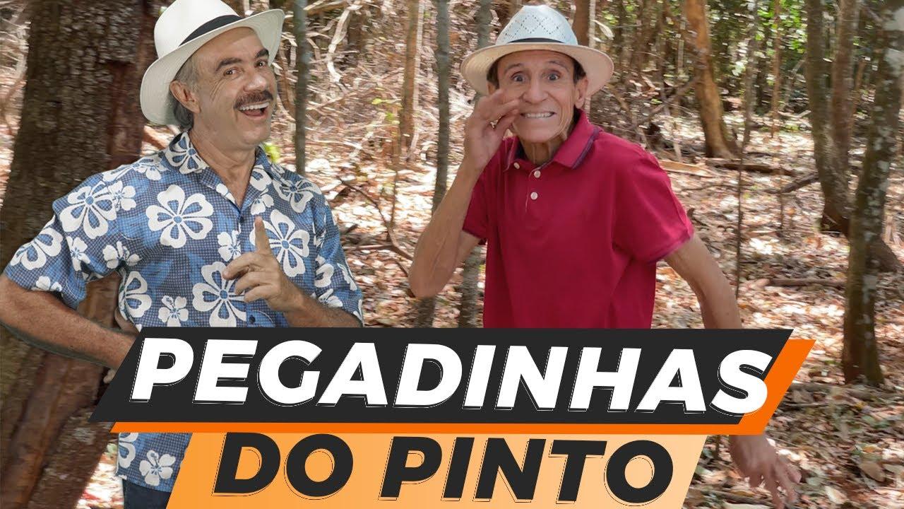 Download Pegadinhas do Pinto| humor inteligente|