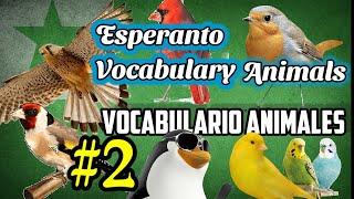 Esperanto Vocabulario Animales / Vocabulary Animals #2