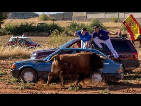 VÍDEO | Encierros por el campo en la Alcarria