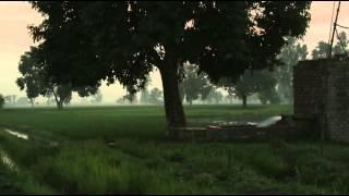 Beautiful Evening Sunset Tube well Tree Crops Fields Punjab Pakistan