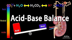 Acid Base Balance, Animation.