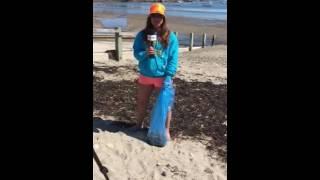 2016 Beach Clean up for MHDTV