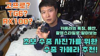 초보 수중사진가를 위한 수중 카메라 추천 (고프로, T…