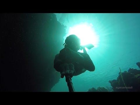 sumbawa freedive - sumbawa besar