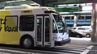 Hertz LGA Shuttle Bus : Eldorado National EZ Rider II BRT at Terminal B