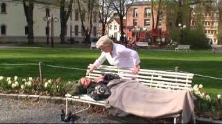 Geir Arne Hansen - Min egen engel (2010)