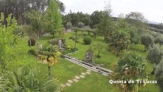 Quinta do Ti Lucas Jardins - Quinta do Ti Lucas