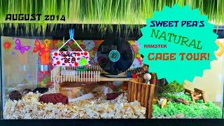 Sweet Pea's Natural Hamster Cage Tour! August 2014 Thumbnail