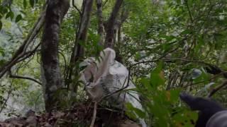 Ký sự tìm lan tập 3 phần 3 Find orchids