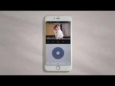 Yi Cloud 1080p short video description
