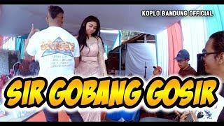 Download Sir Gobang Gosir Koplo Pongdut - Ayu Safiera Amel