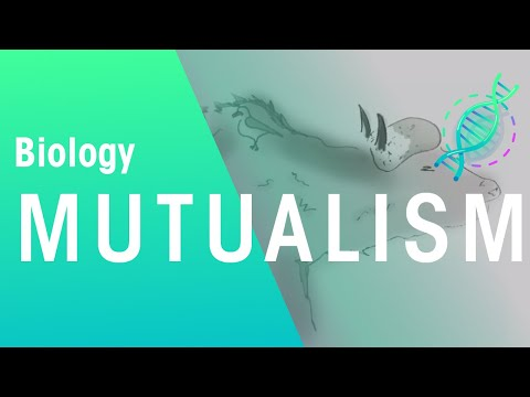 Ecology: What Is Mutualism | Ecology & Environment | Biology | FuseSchool