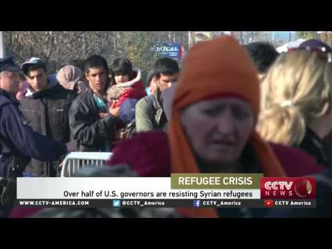 Immigration Lawyer Rachel Wilson discusses US saying 'no' to Syrian refugees