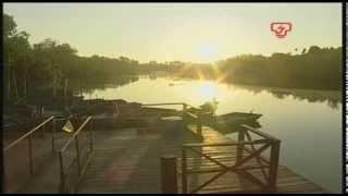 Dokumentari Kelip Kelip Kampung Kuantan (TNB)