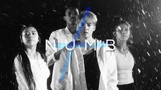 Gambar cover Amber Liu - Numb`